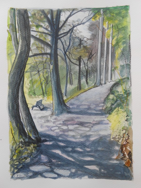 Portmeirion:  The Woodland Path