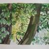 Chestnut tree 2